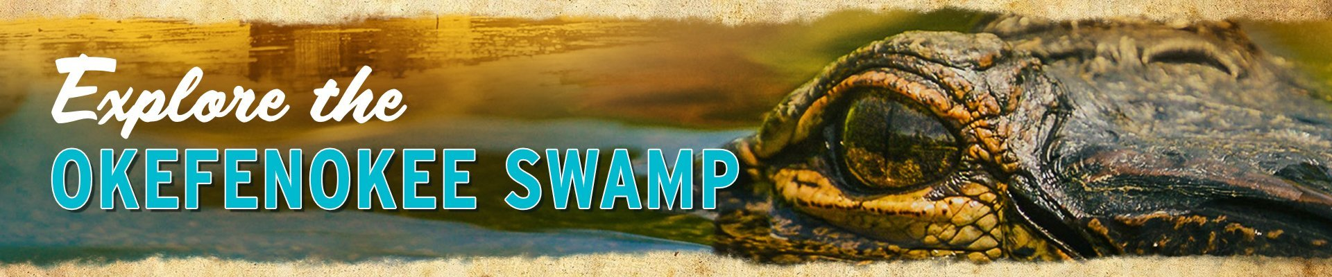 Explore the Okefenokee Swamp