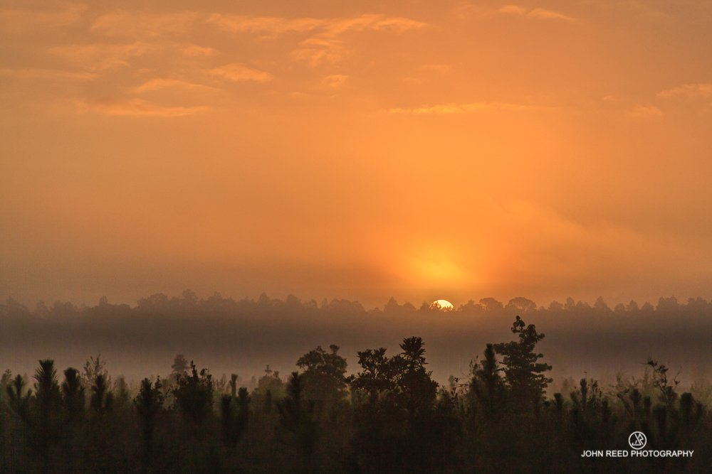 Sunrise by John Reed Photography