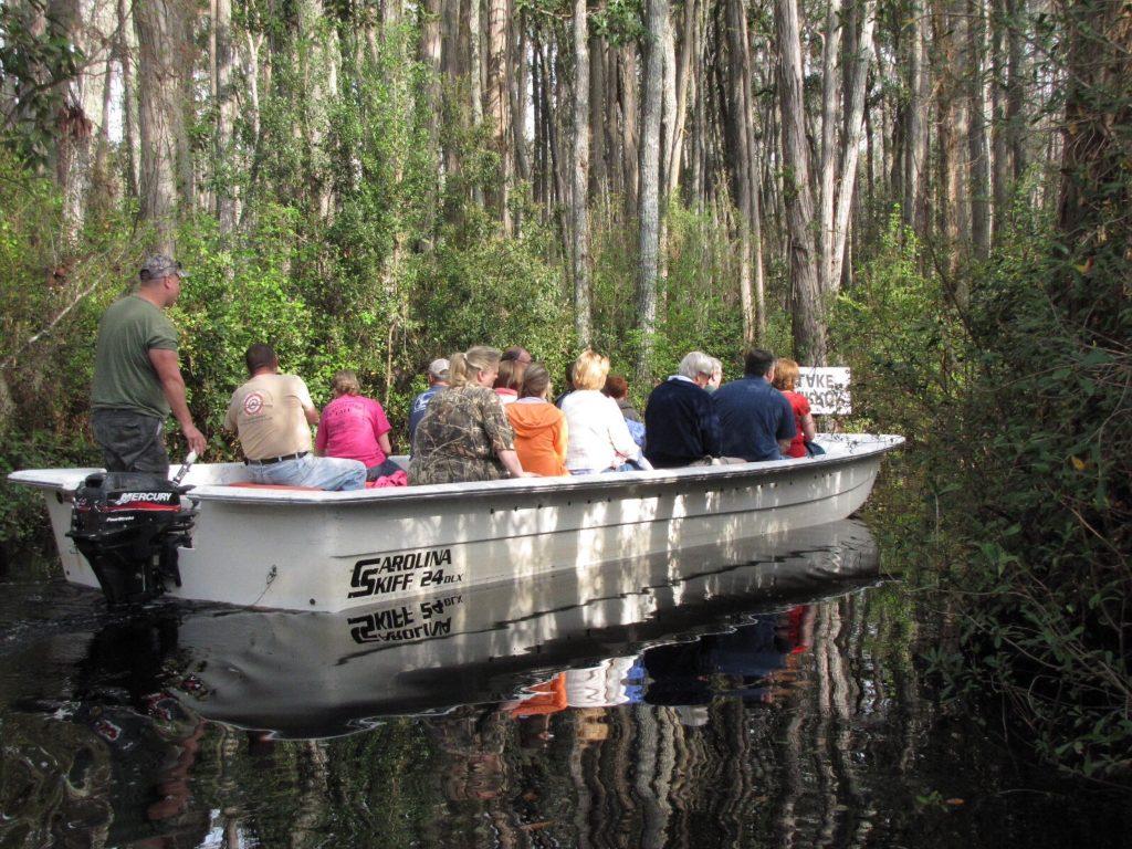 Boat Tour Okefenokee Swamp